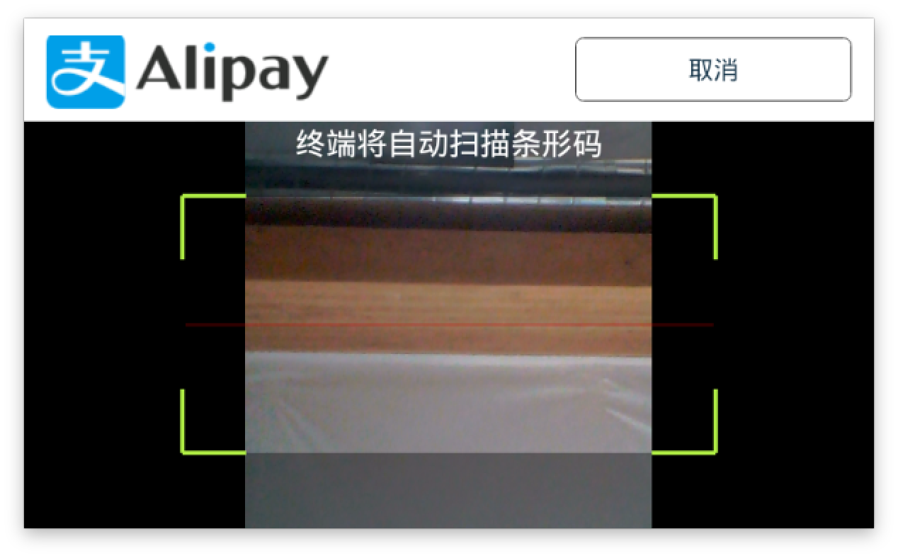 Alipay_Customer_2.png